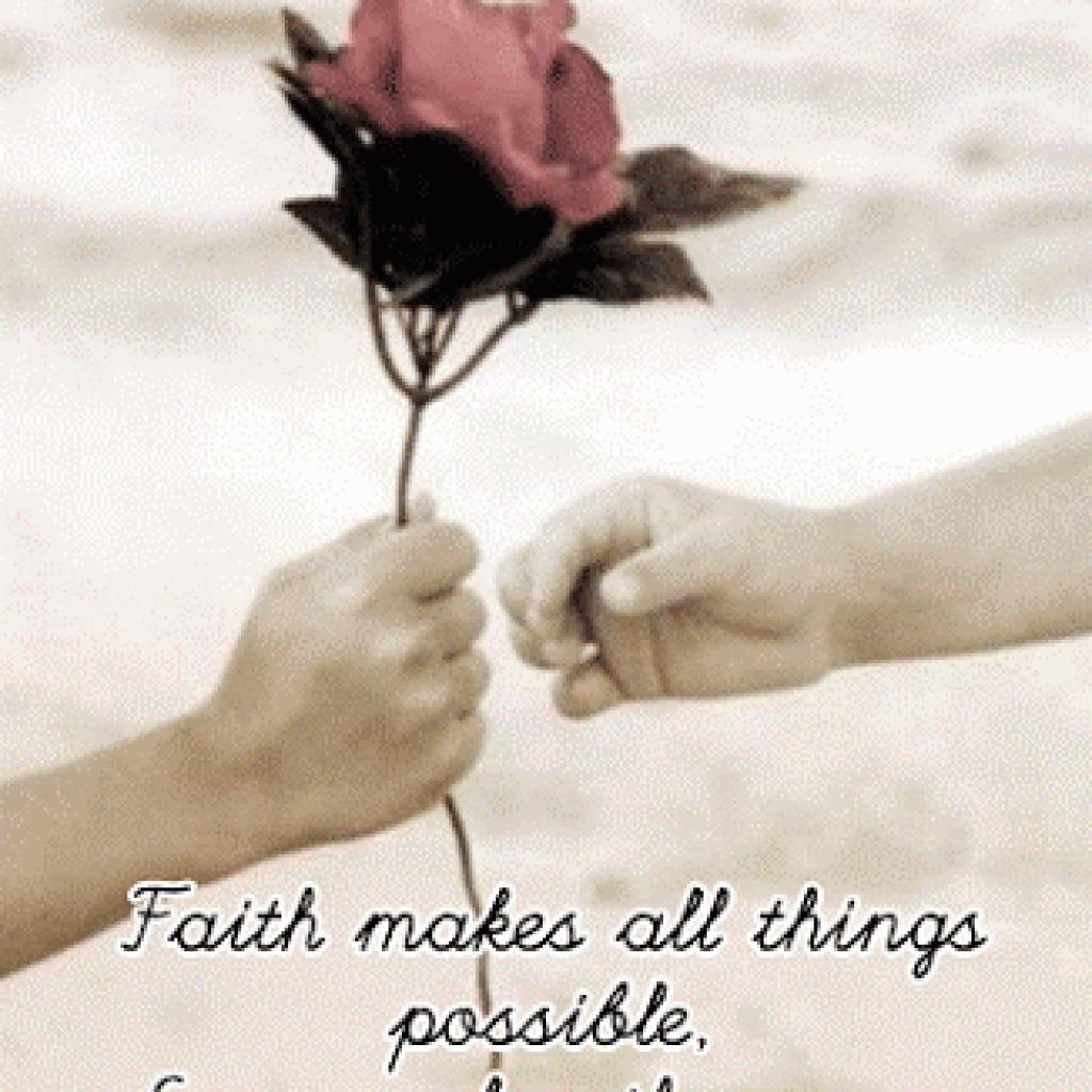 200 Gambar Bunga Mawar Dan Kata Mutiara Hd Gratis Infobaru