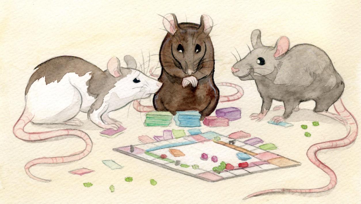 Tiga Penasehat Tikus Sedang Menyusun Rencana