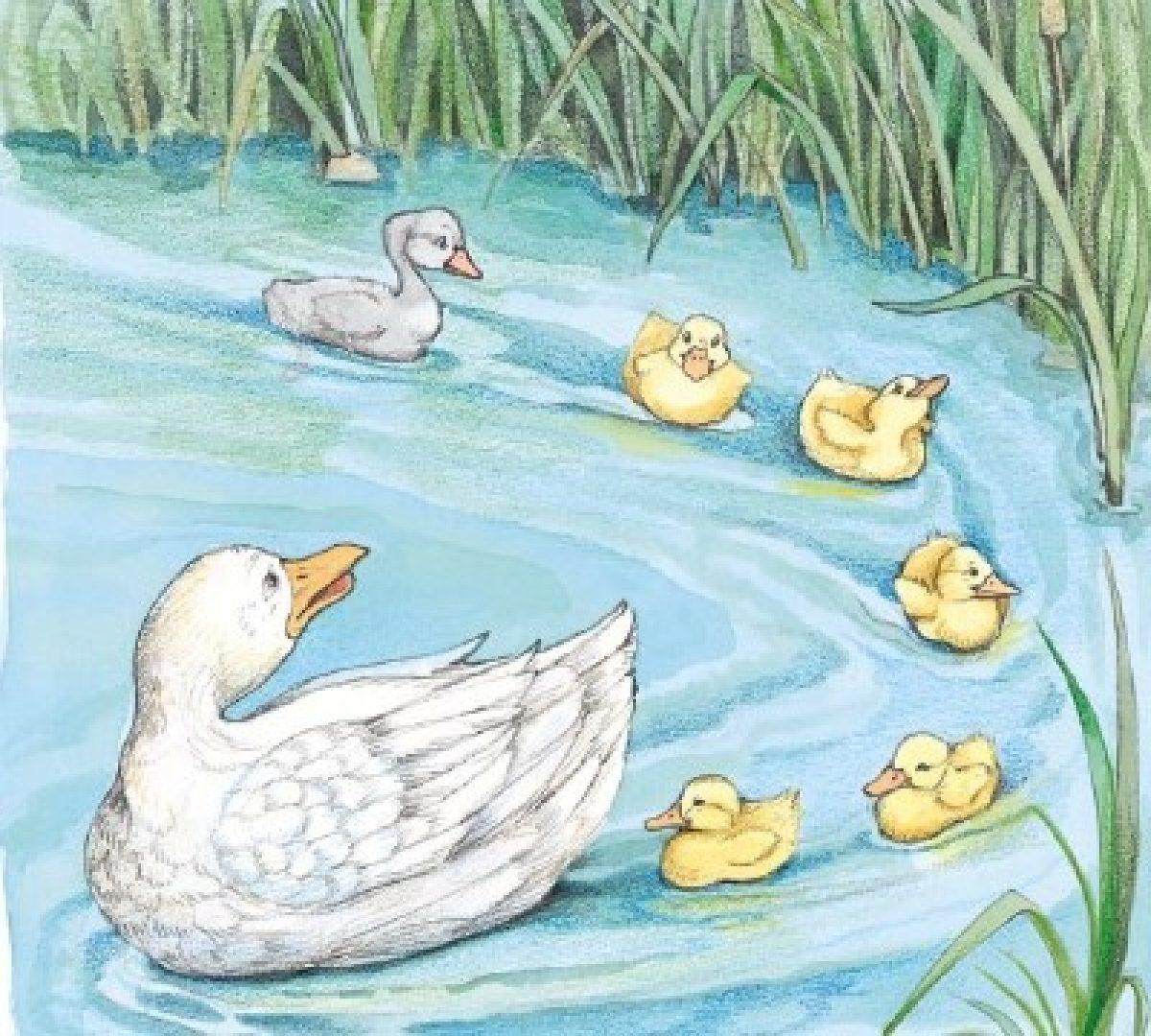 Cerita Fabel Terbaru Kisah Bebek Buruk Rupa