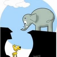 Kisah Dongeng Anak paud Gajah Yang Baik Hati