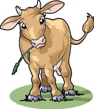 Dongeng anak paud sapi sedang makan rumput