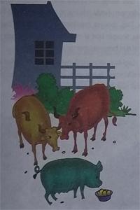 Cerita Dongeng Anak Lembu Jantan yang Iri Pada Babi