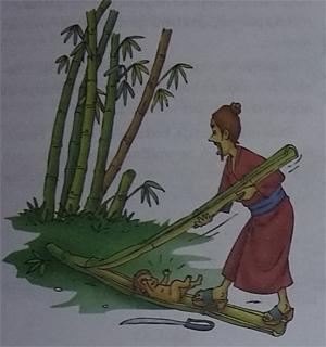 Cerita Dongeng Putri Bambu Dari Jepang