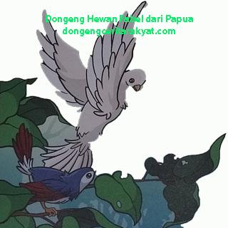 Fabel Cerita Rakyat Burung Kepodang Dan Kakatua