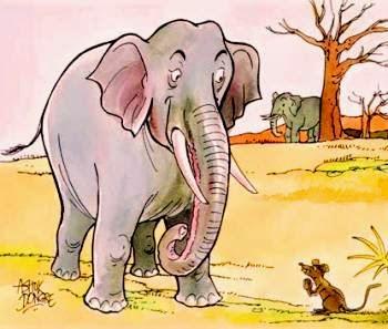 Cerita Fabel Dongeng Kelinci dan Dongeng Gajah