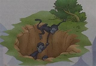 Kumpulan Dongeng Tibet Sekelompok Monyet Dan Bulan