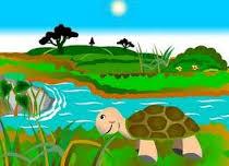 cerita rakyat terpopuler kelebihan kura-kura