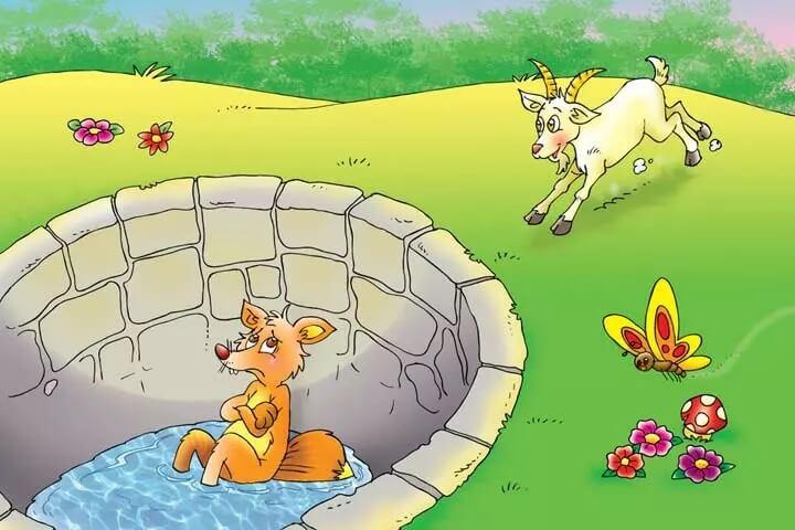 kambing melihat rubah di sumur