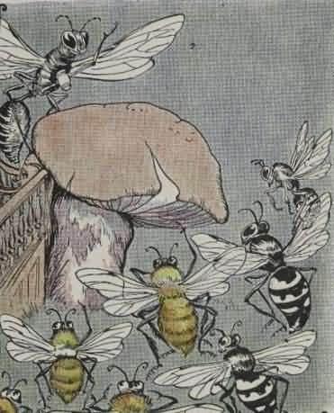 Cerita Dongeng Sederhana Pertengkaran Lebah dan Tawon