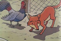 Cerita Anak dengan Gambar : Ayam Jantan Cerdik dan Rubah Licik