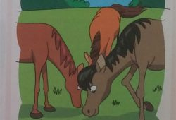 Dua Cerita Binatang dari Buku Dongeng Anak Anak