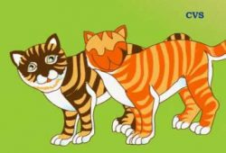 Cerita Dongeng Binatang : Kisah Dua Kucing dari India