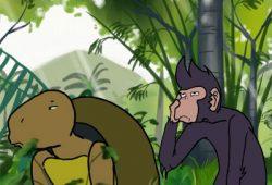 Cerita Dongeng Monyet dan Kura-Kura Fabel Terpopuler
