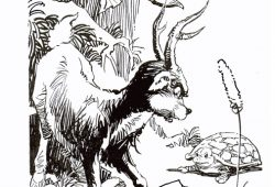 Kumpulan Cerita Hewan Fabel Pendek Terbaru