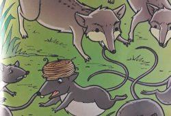Cerita Rakyat Fabel AESOP : Kisah Tikus Melawan Musang