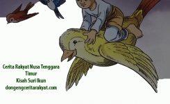 Cerita Rakyat Nusa Tenggara Timur