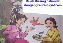 Cerita Untuk Anak SD : Keluarga Bungsu dan Burung Kekekow
