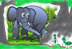 Cerita anak dongeng Fabel : Semut dan Gajah
