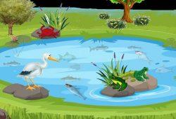 Cerpen Anak Terbaru : Fabel Singkat Bangau dan Kepiting