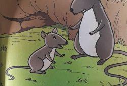 Cerpen Dongeng Anak Mendidik dari AESOP : Tikus Muda (Fabel)