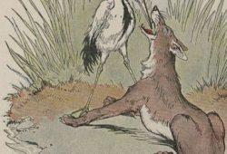 Contoh Cerita Hewan Fabel Dengan Pesan Moral