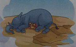 Dongeng Anak Indonesia Gajah dan Kura-Kura