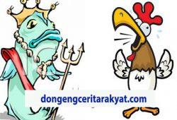 Dongeng Pendek Anak Anak : Ayam dan Ikan Tongkol