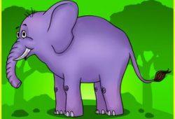Fabel Dongeng Sebelum Tidur : Gajah Yang Baik Hati