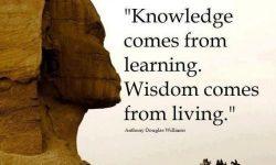 Kata Mutiara Tentang Kebijaksanaan Dalam Kehidupan