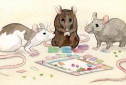Cerita Fabel : Kisah Kerajaan Tikus dan Kucing