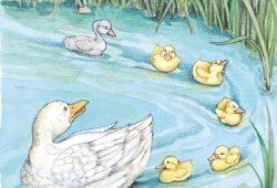 Cerita Fabel Terbaru : Kisah Bebek Buruk Rupa