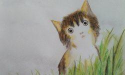 Contoh Cerita Anak Pendek : Permohonan Yang Tulus
