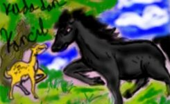 dongeng fabel kuda dan kancil