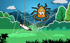 nyamuk yang menjadi sombong terjerat sarang laba-laba